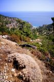 Greece bonito, ilha maravilhosa e mar Foto de Stock Royalty Free