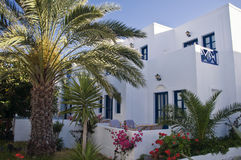 Greece House with Palm Royalty Free Stock Image