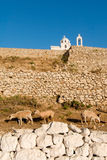 Greece, Karpathos Island Pigadia town. Church and cimetery in Pigadia royalty free stock image