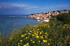 greece koronitown Arkivbild