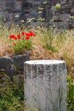 greece kos ruiny Obraz Royalty Free
