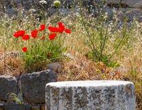 greece kos ruiny Zdjęcie Stock