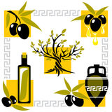 Greece olive Stock Images