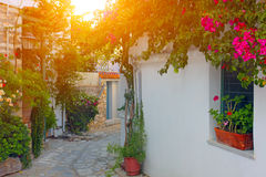 Greece, Skiathos Island Royalty Free Stock Photography