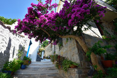 Greece, Skopelos Island, Skopelos Town. Typical Alley at Skopelos Town Royalty Free Stock Images