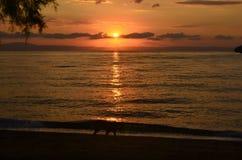 Greece, sunrise Stock Image