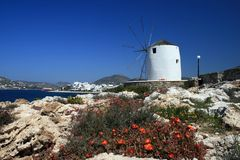 Greece, Windmill and flowers stock photography