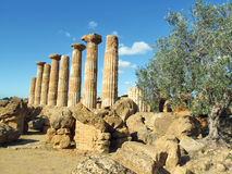 Greecian temple. Ancient ruin of grecian temple stock image