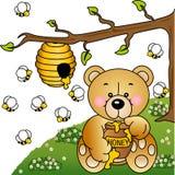 Greedy Bear Stock Photos