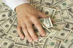 Greedy hand grabs money. Lot of dollars Stock Photos