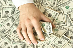 Greedy hand grabs money. Lot of dollars Stock Image