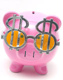 Greedy Pig Stock Images