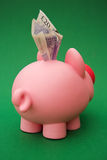 Greedy pig! Royalty Free Stock Images