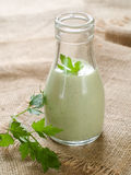 Greeen dressing Royalty Free Stock Images