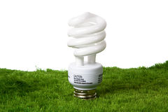 Greeen light bulb Stock Photos