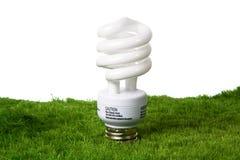 Greeen light bulb. Energy efficient light bulb in grass on a black background Stock Photos