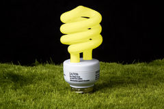 Greeen light bulb. Energy efficient light bulb in grass that is yellow to show the light is on Stock Photography