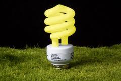 Greeen light bulb Stock Photography