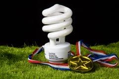 Greeen light bulb. Energy efficient light bulb in grass Stock Photos