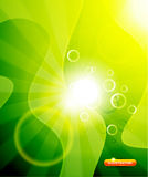 Greeen shiny vector background Stock Photo