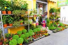 Greek Alley - Aegina island, Greece Royalty Free Stock Images