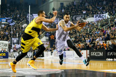 Greek Basket League game Paok vs Aris. Thessaloniki, Greece, February 5, 2017: Some players in action during the Greek Basket League game Paok vs Aris at PAOK Royalty Free Stock Photos