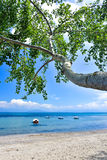 Greek beach on the island of Corfu in the mediterranean. Greek beach on the island of Corfu Kerkyra in the mediterranean sea with sunny weather stock photo