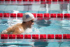 Greek breaststroke swimmer during 7th Trofeo citta di Milano swimming competition. Stock Images