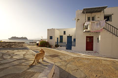 Mykonos scene Royalty Free Stock Images