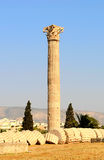 Greek column Royalty Free Stock Photos