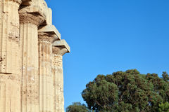 Greek columns in Selinunte Stock Photos