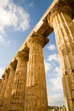 Greek columns, Sicily Royalty Free Stock Photo
