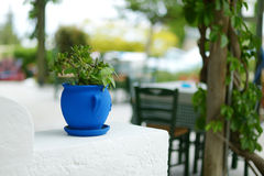 Greek courtyard with blue flower pot Stock Images