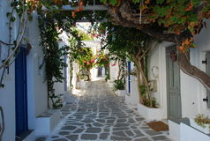 Greek courtyard, Island of Paros. Typical Greek courtyard, old village of Naoussa, island of Paros, Greece royalty free stock photography