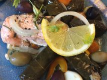 Greek Cuisine: Salmon, Onion, Lemon, Olives, Peppers and Dolmades Stock Images