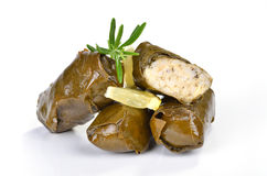 Greek dolmades Stock Photography