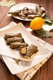 Greek dolmades Royalty Free Stock Photo