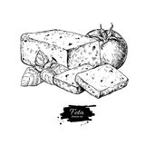 Greek feta cheese block drawing. Vector hand drawn food sketch. With  basil, tomato. Greek salad ingredient.r Farm market product for label, poster, icon Royalty Free Stock Photo