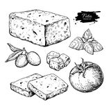 Greek feta cheese block, slice drawing. Vector hand drawn food s. Ketch with olive, basil, tomato. Greek salad ingredient.r Farm market product for label, poster Stock Image