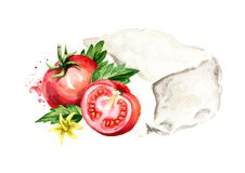 Greek feta cheese block with tomatoes. Watercolor hand drawn illustration, isolated on white background.  Stock Photography