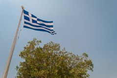 Greek flag. A Greek flag fluttering in the wind with a tree located below it royalty free stock photo