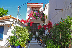 Greek houses with lots of flowers Stock Photos