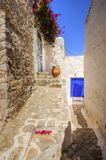Greek island alley. A picturesque alley on the Greek island Hydra with the distinct white wash walls, blue doors, stone paved paths and red bougainvillea Stock Images