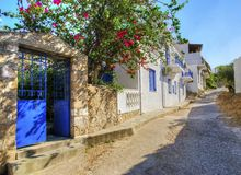 Greek island alley. A picturesque alley on the Greek island Spetses. The traditional blue doors and white walls as well as the bougainvillea plant on the Stock Photography
