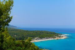 Greek island paradise beach, blue sea and pine tree. Mediterrane. An sea beach, evergreen pine and blue water, Greece island Royalty Free Stock Photos