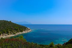 Greek island paradise beach, blue sea and pine tree. Mediterrane. An sea beach, evergreen pine and blue water, Greece island Royalty Free Stock Images