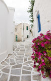 Greek Island Paros, historic village Lefkes typical street scene. With painted stone street and white classic buidlings with flowers in pots Royalty Free Stock Image