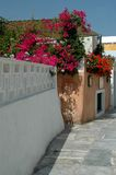 Greek island street scene. Typical greek island street scene Royalty Free Stock Photo
