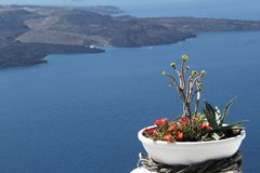 Greek Islands - Caldera View Santorini. Pot of flowers in focus with the magnificent Caldera view of Santorini in the background Stock Image