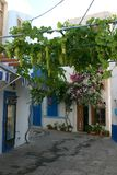 Greek Islands Scene. Street scene in the greek islands Stock Photos